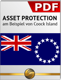 Download Asset Protection PDF